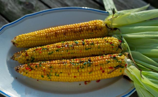 Tuoretta maissia chili-korianterivoilla